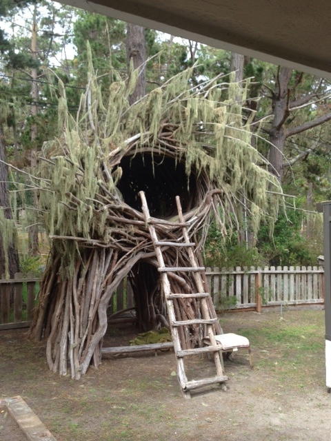 spirit-nest